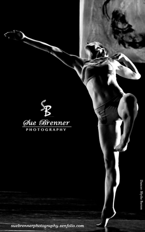 Sue Brenner Photography